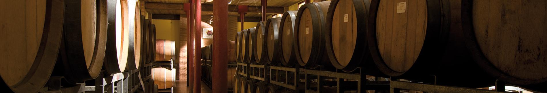 Affinamento e maturazione dei vini