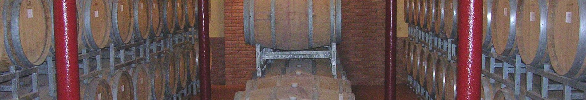 Visita in cantina: visita della Torre Vinaria e del Museo del Vino