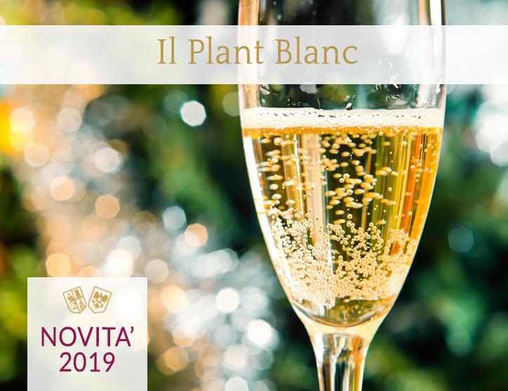 Plant Blanc - Vino Bianco, morbido e fruttato - Torrevilla